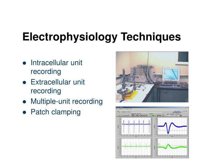 Electrophysiology Techniques