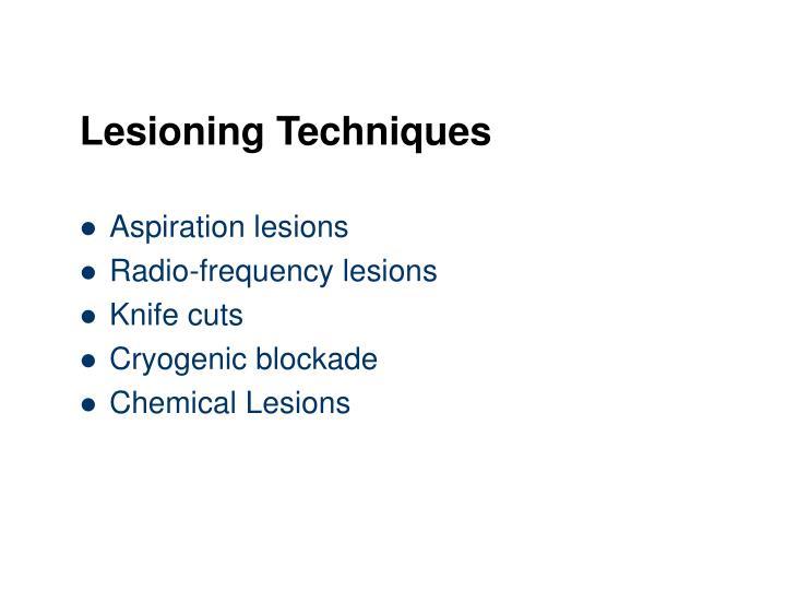 Lesioning Techniques
