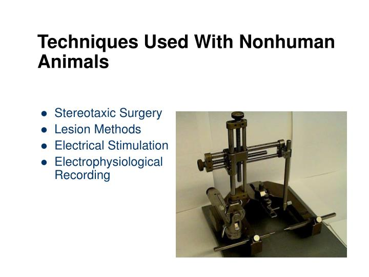 Techniques Used With Nonhuman Animals