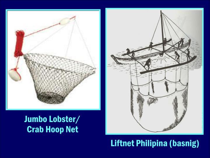 Jumbo Lobster/