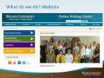 what do we do website