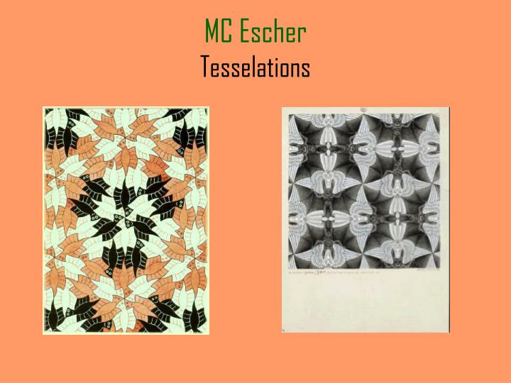 Mc escher tesselations