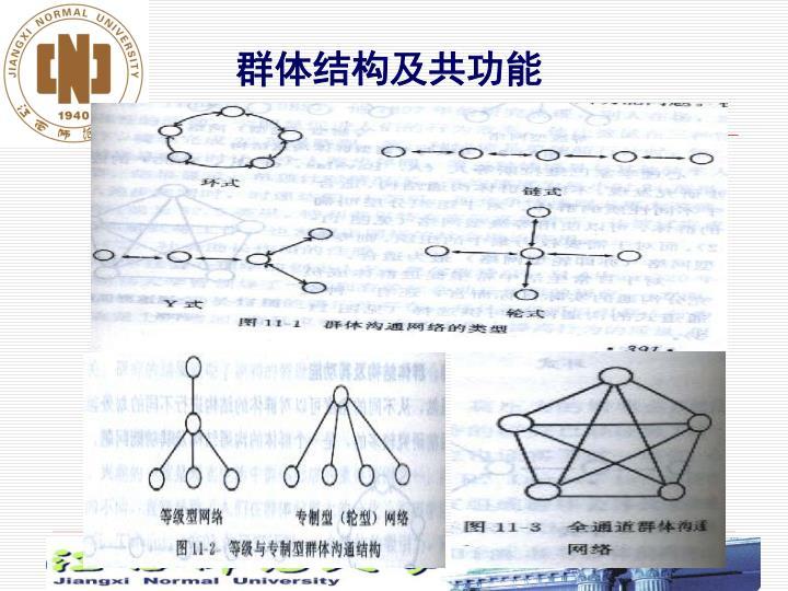 群体结构及共功能