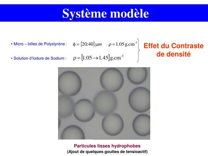 Système modèle