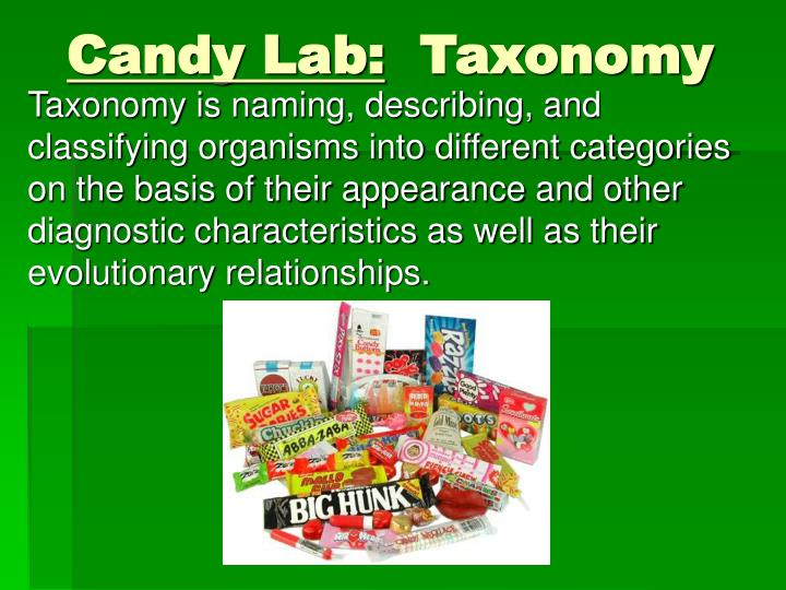 Candy lab taxonomy