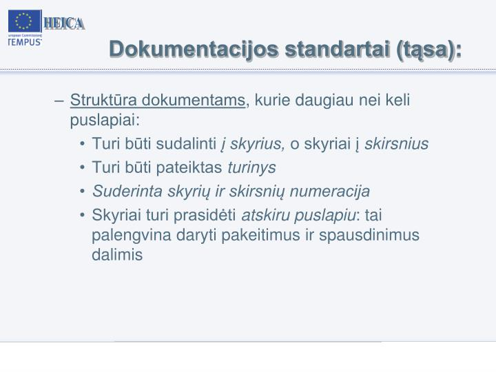 Dokumentacijos standartai (tąsa)