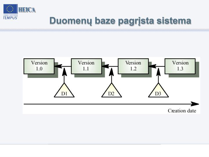 Duomenų baze pagrįsta sistema