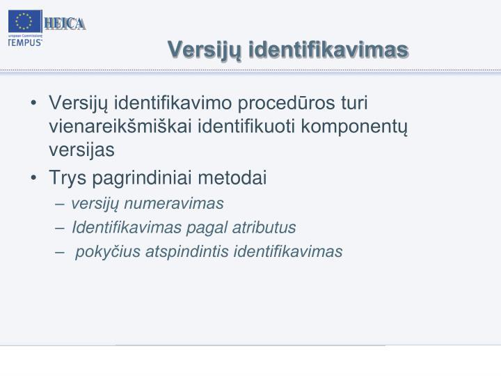 Versijų identifikavimas