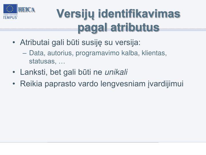 Versijų identifikavimas pagal atributus