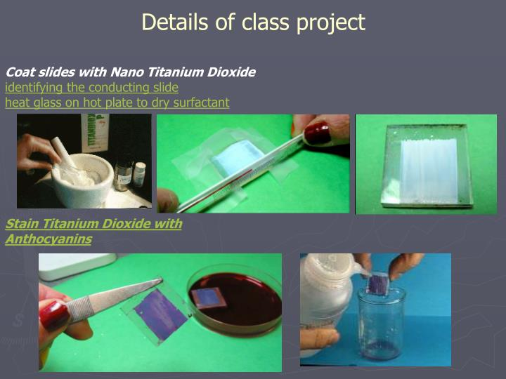 Details of class project