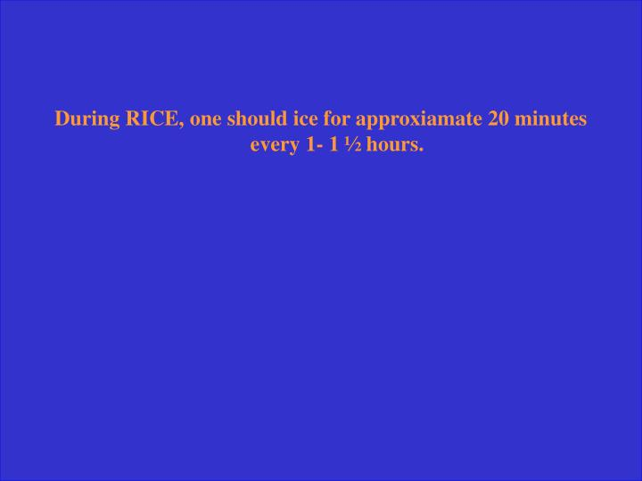 During RICE, one should ice for approxiamate 20 minutes every 1- 1 ½ hours.