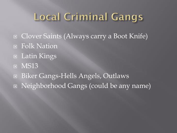 Local Criminal Gangs
