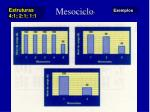 mesociclo11