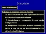 mesociclo2