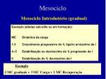 mesociclo5