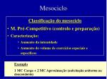 mesociclo7
