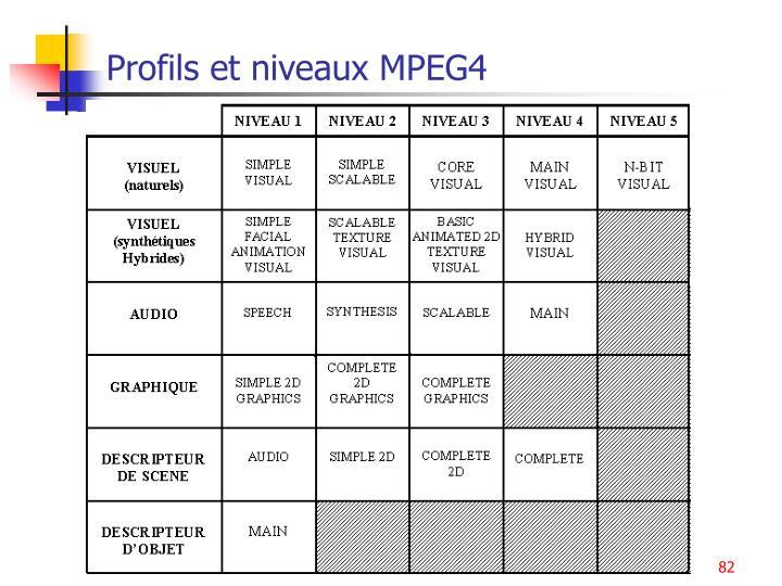 Profils et niveaux MPEG4