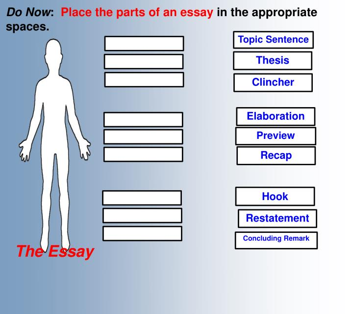 Parts Of A Thesis Paper
