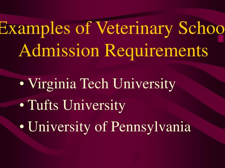 Examples of Veterinary School Admission Requirements