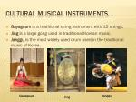 cultural musical instruments