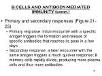 b cells and antibody mediated immunity cont3