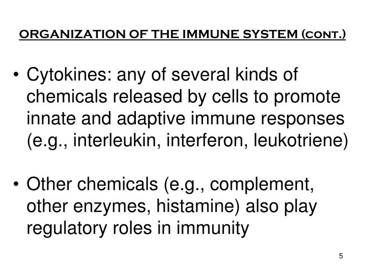 ORGANIZATION OF THE IMMUNE SYSTEM (cont.)