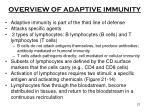 overview of adaptive immunity
