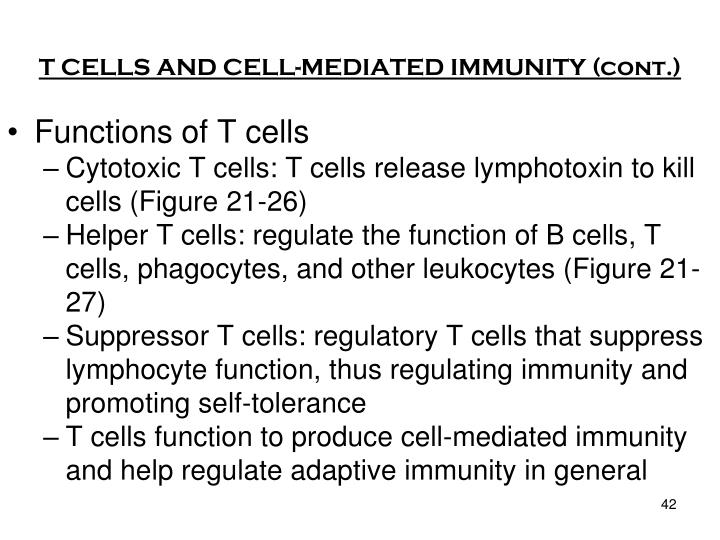 T CELLS AND CELL-MEDIATED IMMUNITY (cont.)