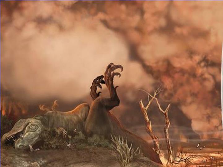 4th Mass Extinction