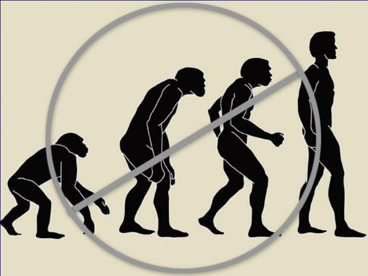 The Age of Early Human