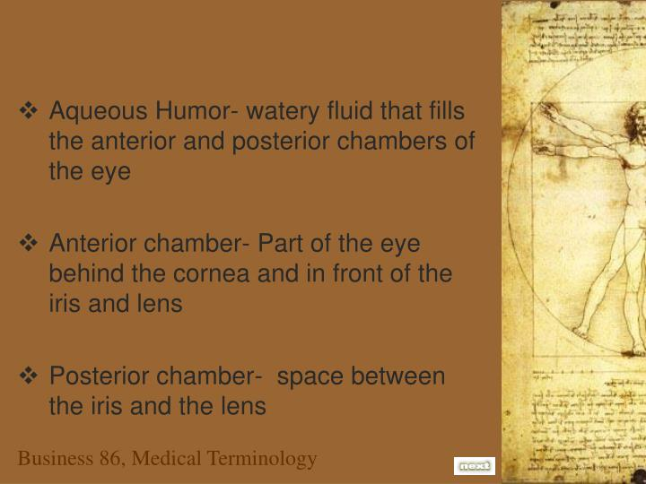 Aqueous Humor- watery fluid that fills the anterior and posterior chambers of the eye