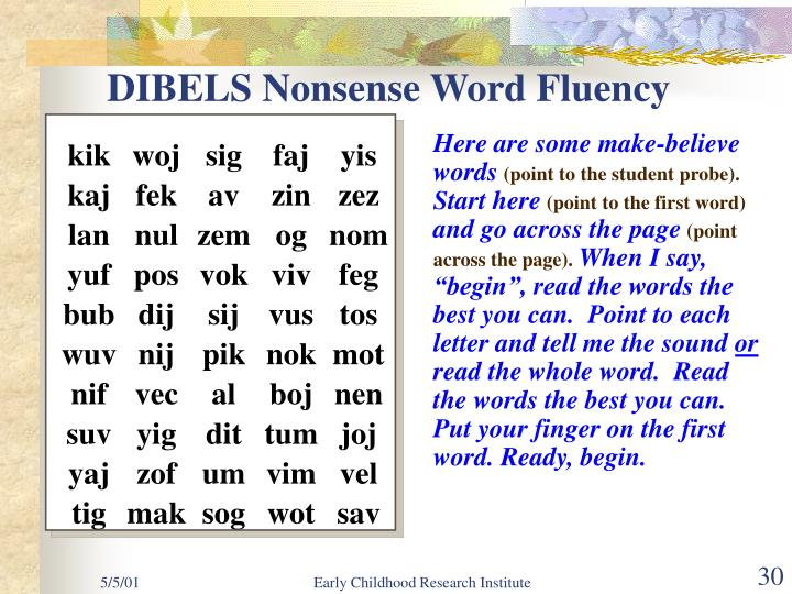 DIBELS Nonsense Word Fluency