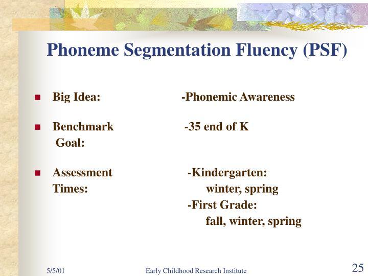 Phoneme Segmentation Fluency (PSF)