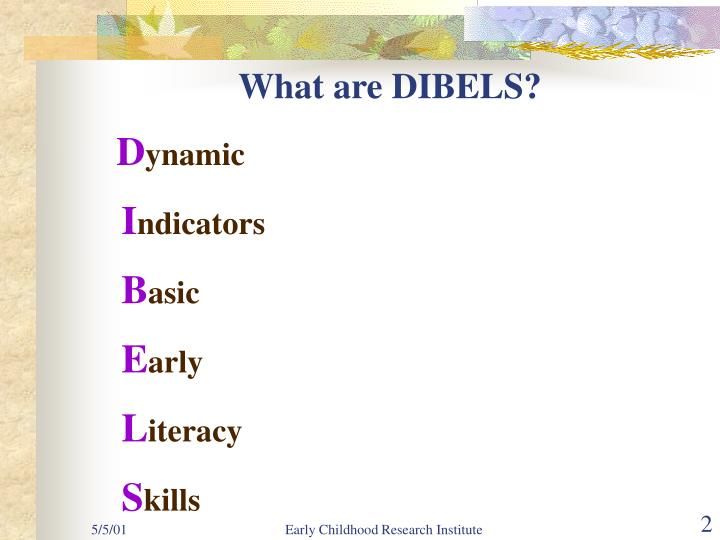 What are dibels