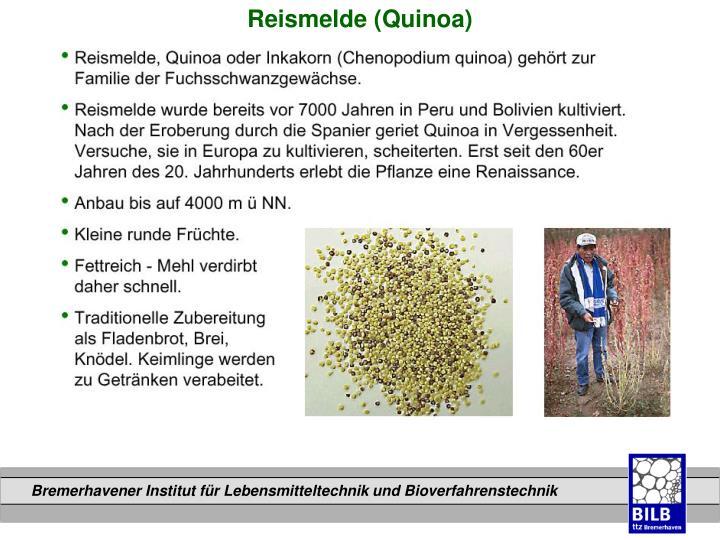 Reismelde (Quinoa)