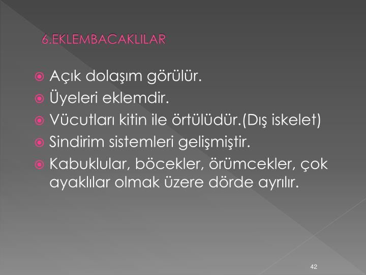 6.EKLEMBACAKLILAR