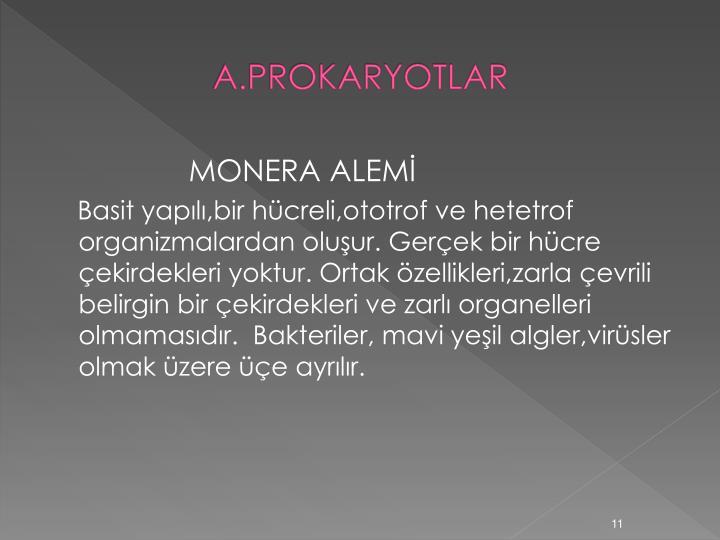 A.PROKARYOTLAR