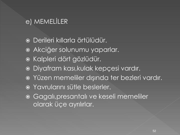 e) MEMELİLER