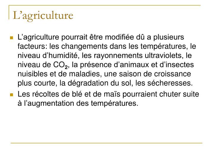 L'agriculture pourrait être modifiée dû a plusieurs facteurs: les changements dans les températures, le niveau d'humidité, les rayonnements ultraviolets, le niveau de CO