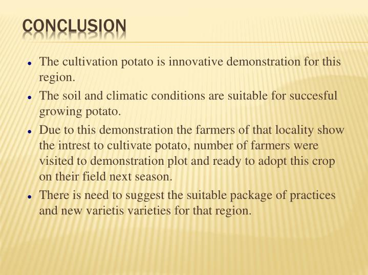 The cultivation potato is innovative demonstration for this region.
