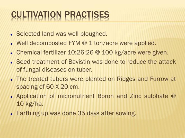 Selected land was well ploughed.