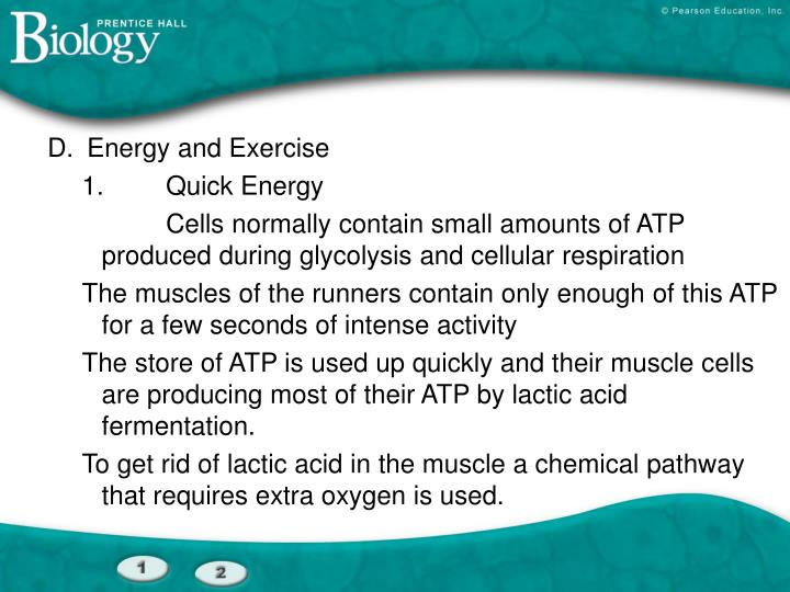 D.	Energy and Exercise