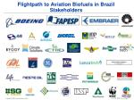 flightpath to aviation biofuels in brazil stakeholders