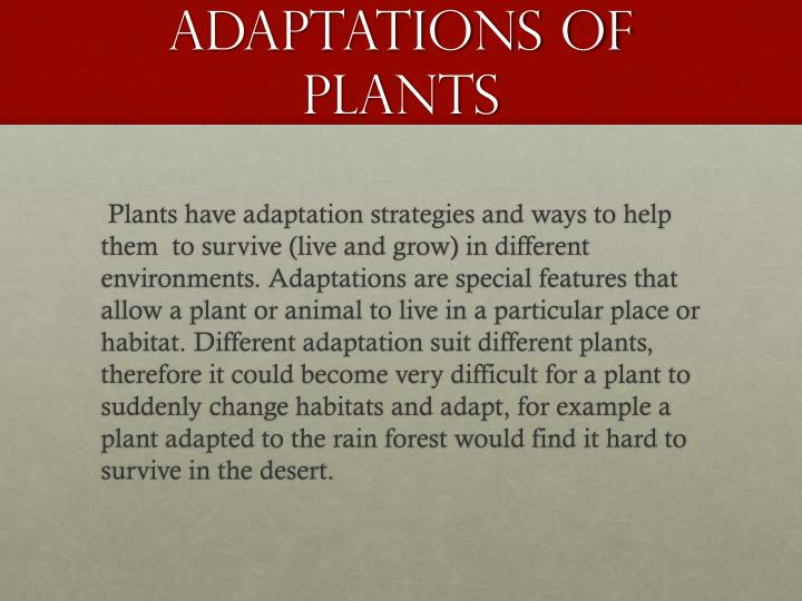 Adaptations of plants