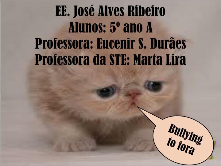 EE. José Alves Ribeiro