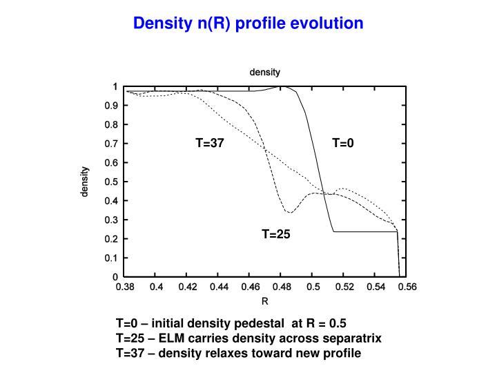 Density n(R) profile evolution