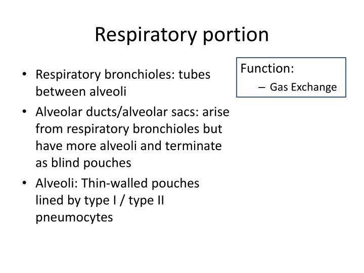 Respiratory portion