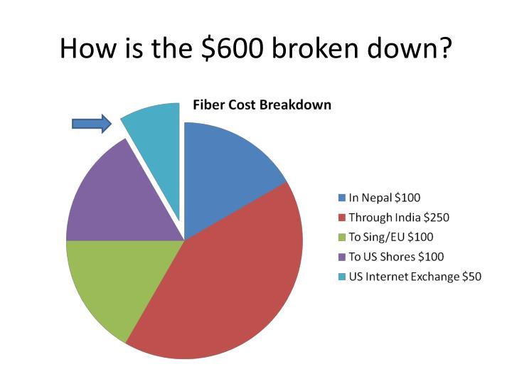 How is the $600 broken down?