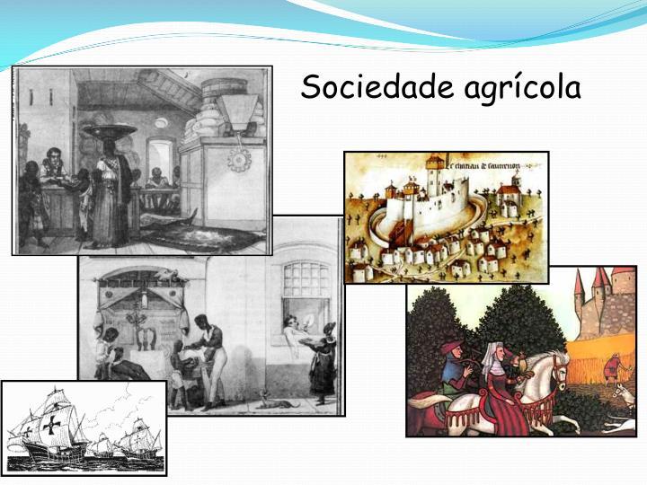 Sociedade agrícola