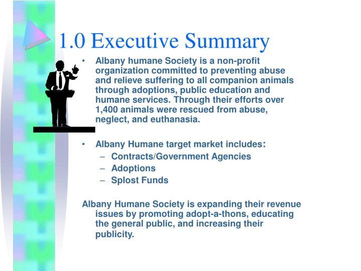 1 0 executive summary